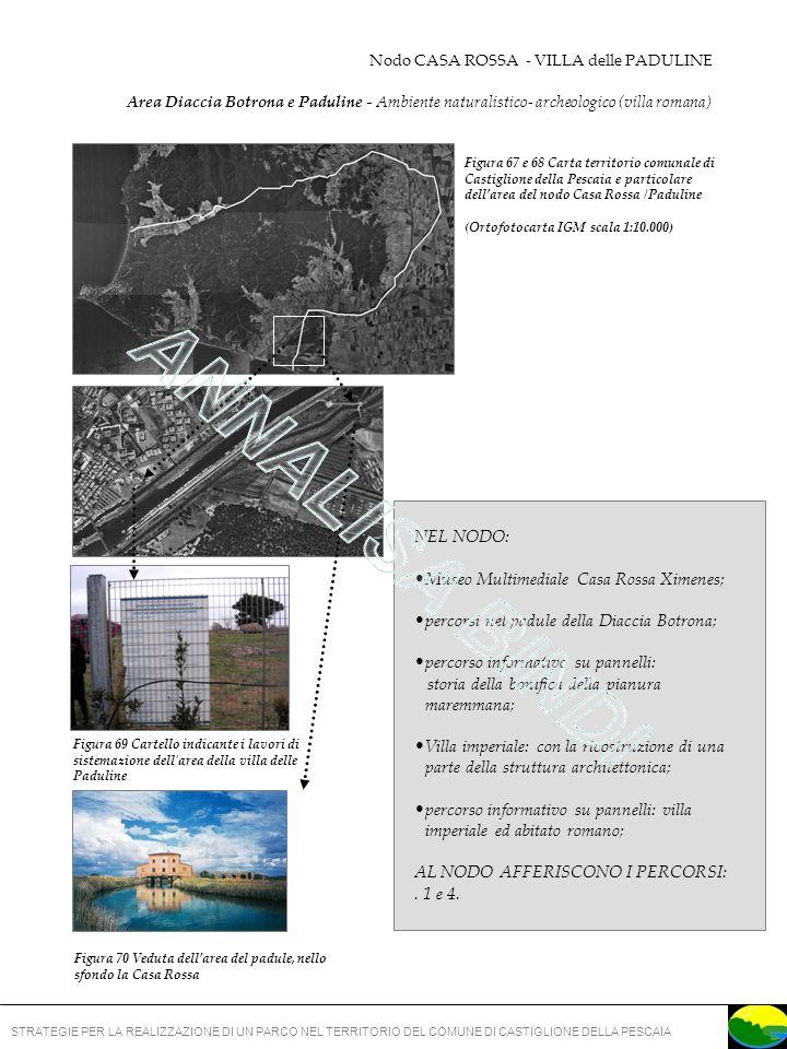 ANNALISA BINDI NEL NODO: Museo Multimediale Casa Rossa Ximenes;