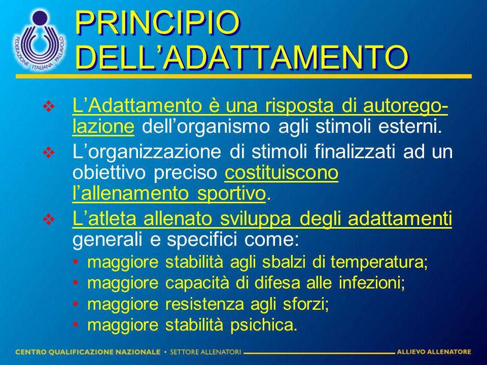 PRINCIPIO DELL'ADATTAMENTO