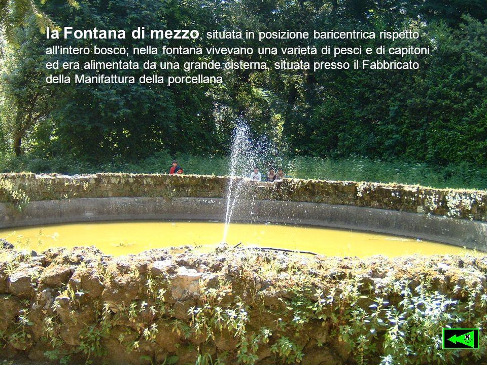 la Fontana di mezzo, situata in posizione baricentrica rispetto all intero bosco; nella fontana vivevano una varietà di pesci e di capitoni ed era alimentata da una grande cisterna, situata presso il Fabbricato della Manifattura della porcellana
