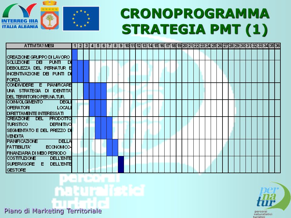 CRONOPROGRAMMA STRATEGIA PMT (1)