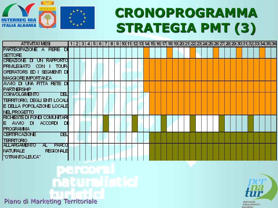 CRONOPROGRAMMA STRATEGIA PMT (3)