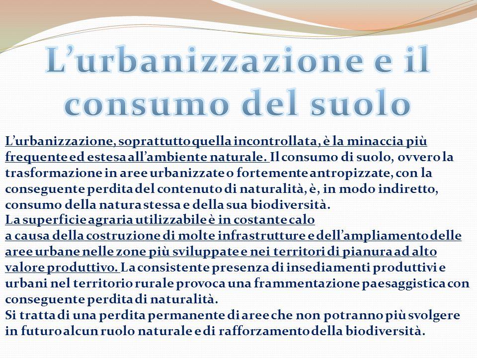 L'urbanizzazione e il consumo del suolo