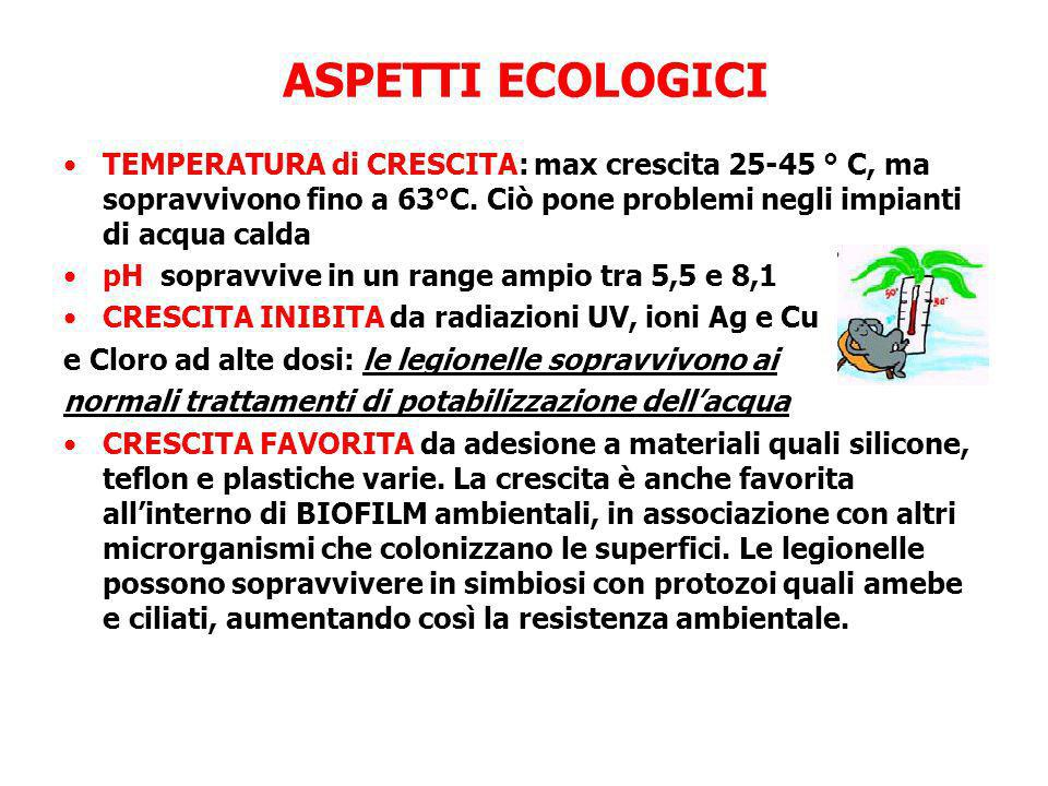 ASPETTI ECOLOGICI TEMPERATURA di CRESCITA: max crescita 25-45 ° C, ma sopravvivono fino a 63°C. Ciò pone problemi negli impianti di acqua calda.