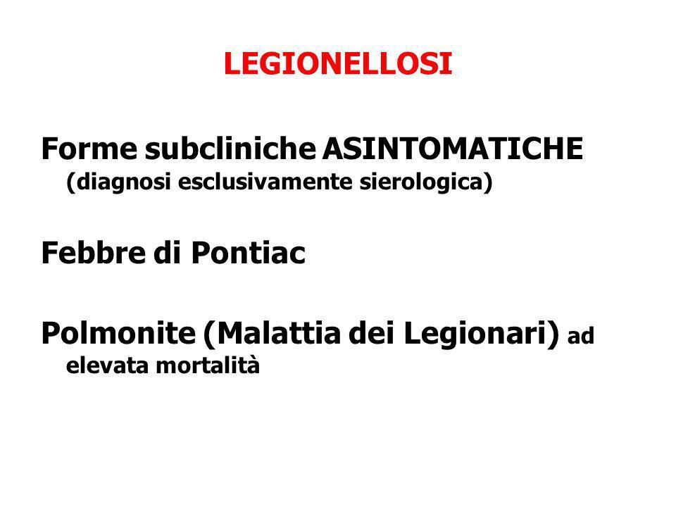 LEGIONELLOSI Forme subcliniche ASINTOMATICHE (diagnosi esclusivamente sierologica) Febbre di Pontiac.