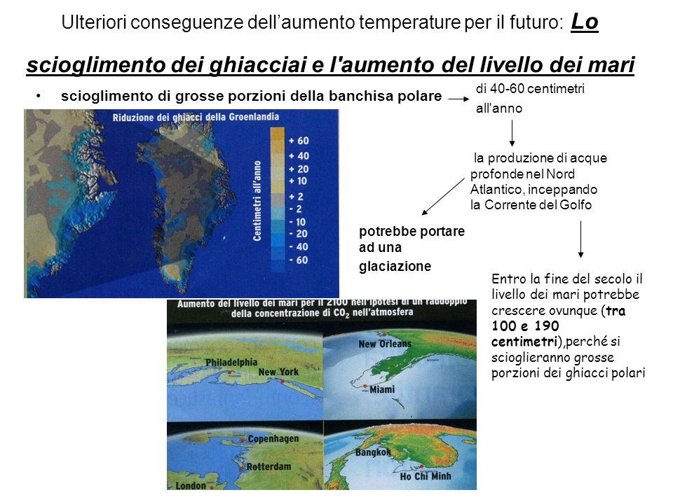Ulteriori conseguenze dell'aumento temperature per il futuro: Lo scioglimento dei ghiacciai e l aumento del livello dei mari