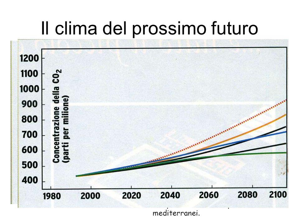 Il clima del prossimo futuro