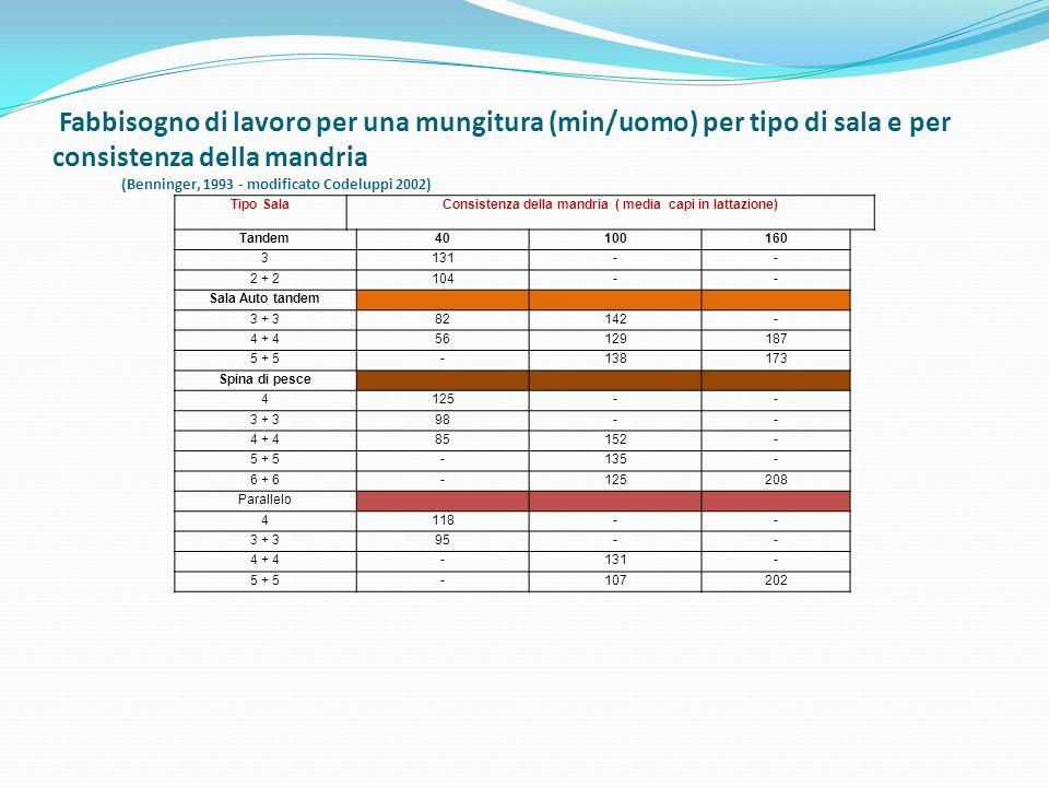 Consistenza della mandria ( media capi in lattazione)