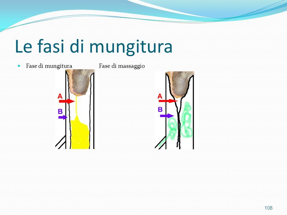 Le fasi di mungitura Fase di mungitura Fase di massaggio
