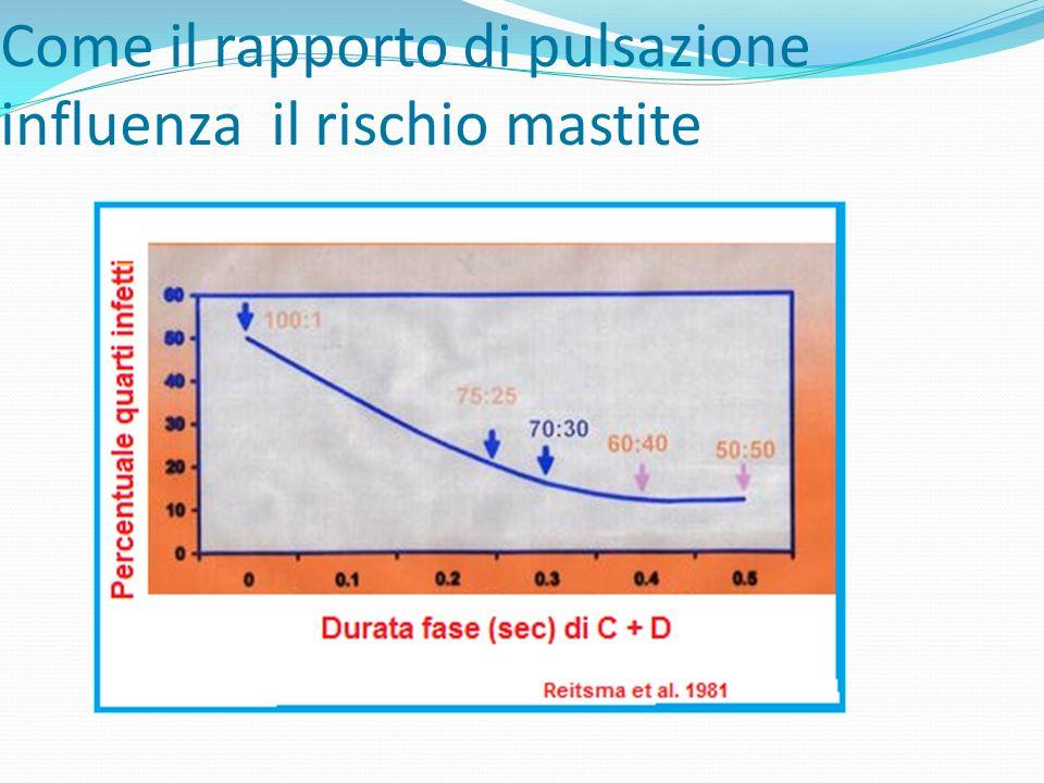 Come il rapporto di pulsazione influenza il rischio mastite