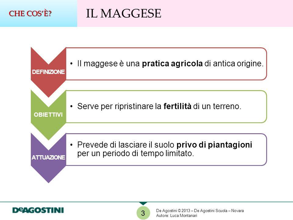 CHE COS'È IL MAGGESE. DEFINIZIONE. Il maggese è una pratica agricola di antica origine. OBIETTIVI.