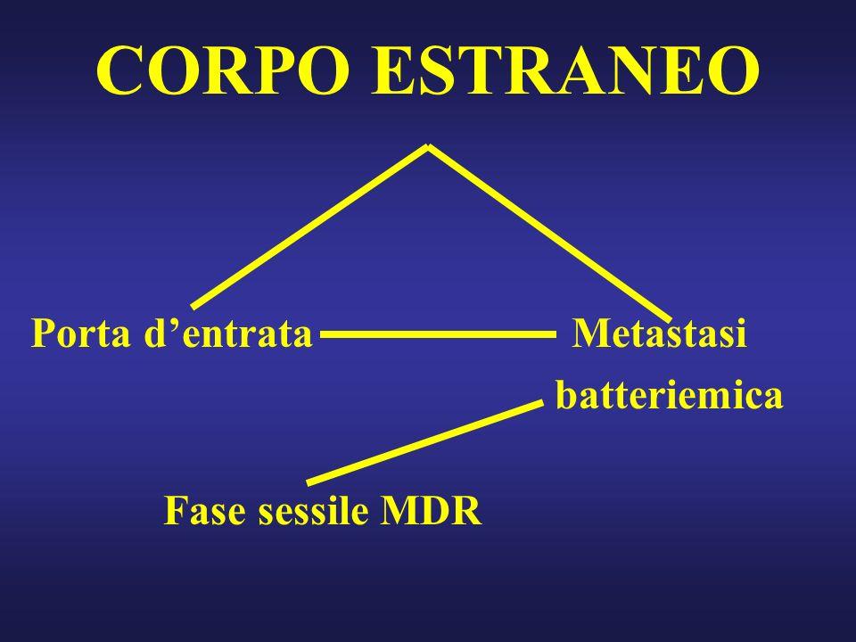 CORPO ESTRANEO Porta d'entrata Metastasi batteriemica Fase sessile MDR