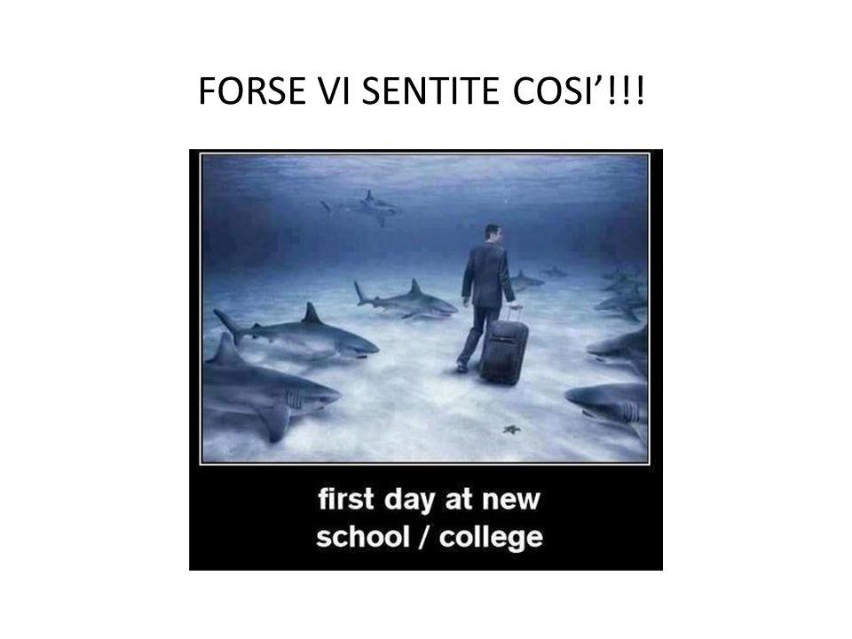 FORSE VI SENTITE COSI'!!!