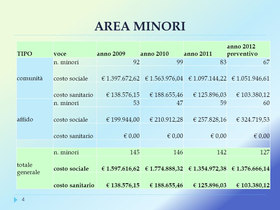 AREA MINORI TIPO voce anno 2009 anno 2010 anno 2011