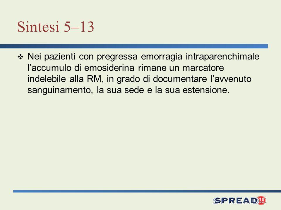 Sintesi 5–13