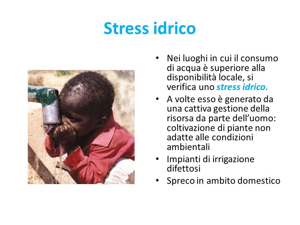 Stress idrico Nei luoghi in cui il consumo di acqua è superiore alla disponibilità locale, si verifica uno stress idrico.