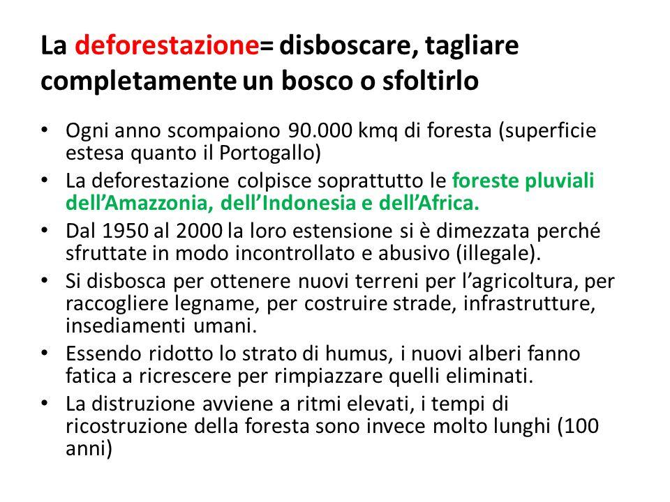 La deforestazione= disboscare, tagliare completamente un bosco o sfoltirlo
