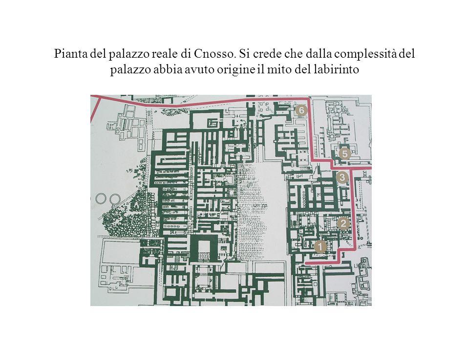 Pianta del palazzo reale di Cnosso