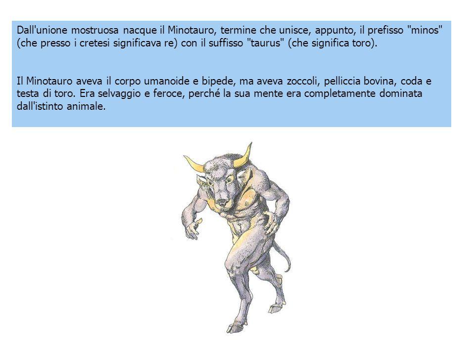 Dall unione mostruosa nacque il Minotauro, termine che unisce, appunto, il prefisso minos (che presso i cretesi significava re) con il suffisso taurus (che significa toro).