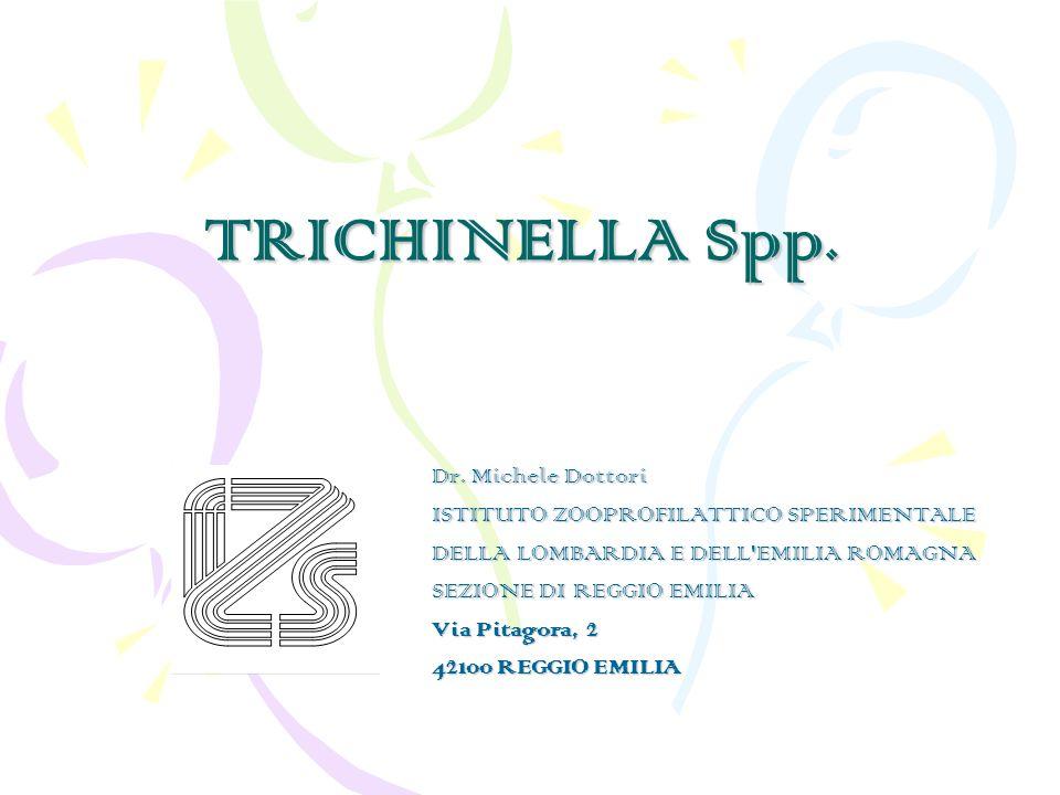 TRICHINELLA Spp. Dr. Michele Dottori