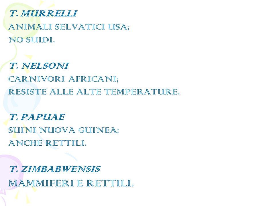 MAMMIFERI E RETTILI. T. MURRELLI T. NELSONI T. PAPUAE T. ZIMBABWENSIS