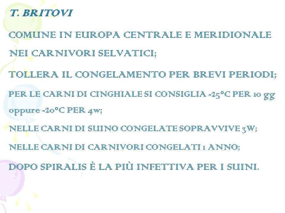 T. BRITOVI COMUNE IN EUROPA CENTRALE E MERIDIONALE NEI CARNIVORI SELVATICI; TOLLERA IL CONGELAMENTO PER BREVI PERIODI;