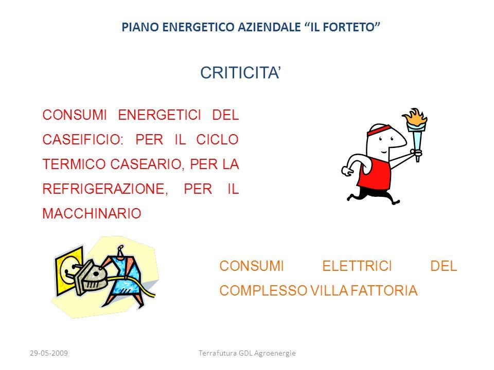 PIANO ENERGETICO AZIENDALE IL FORTETO