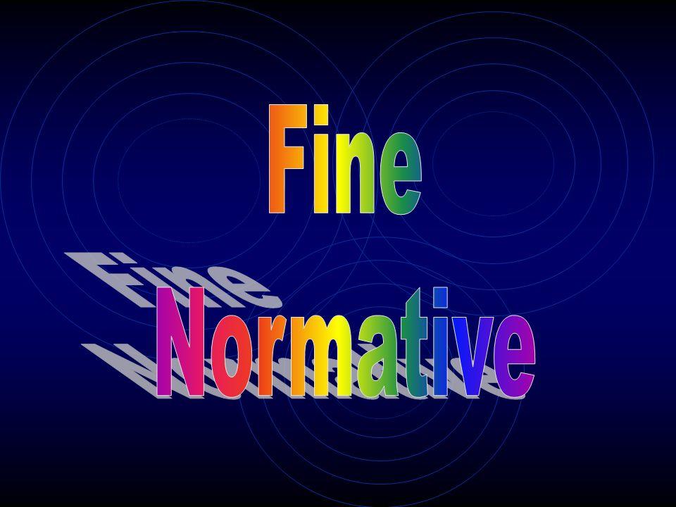 Fine Normative