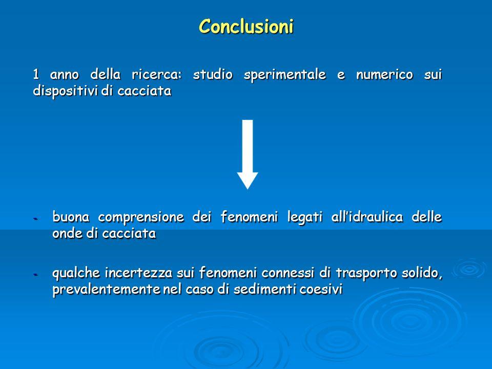 Conclusioni 1 anno della ricerca: studio sperimentale e numerico sui dispositivi di cacciata.