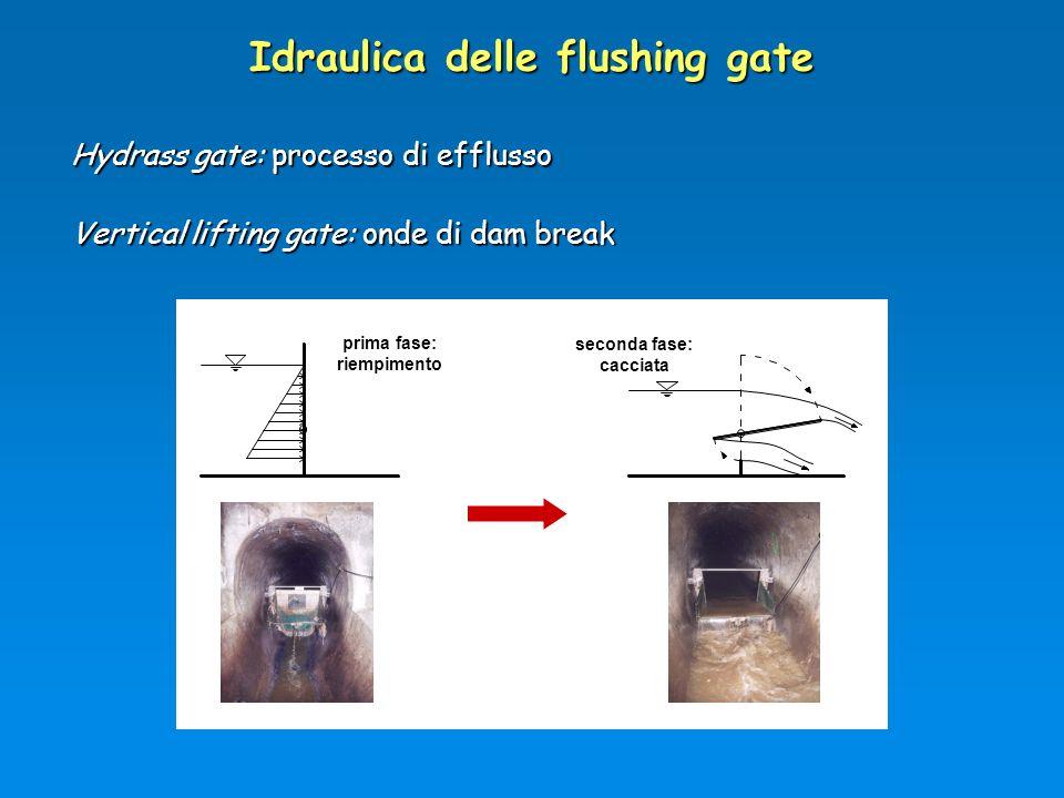 Idraulica delle flushing gate