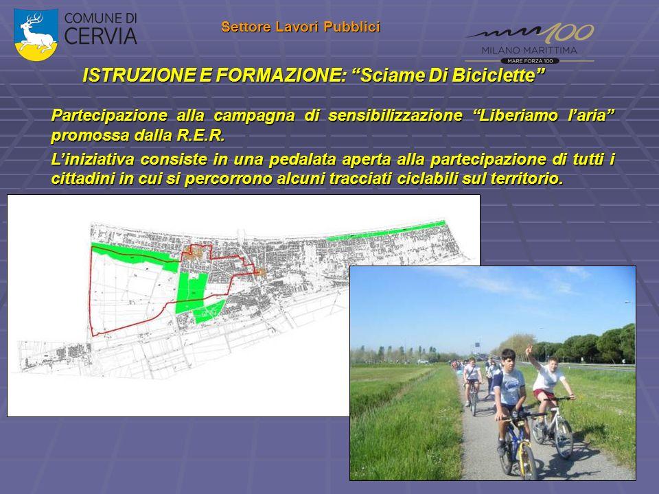 ISTRUZIONE E FORMAZIONE: Sciame Di Biciclette