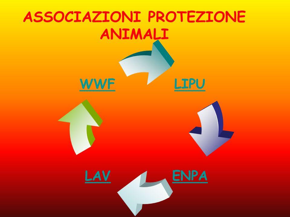 ASSOCIAZIONI PROTEZIONE ANIMALI