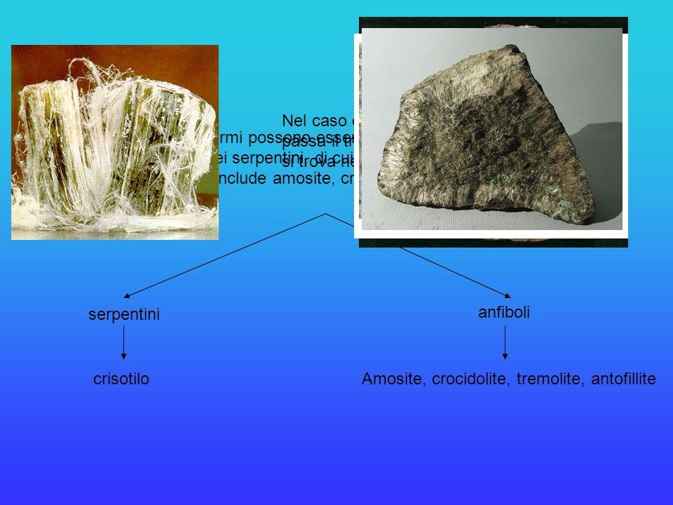Nel caso della Val di Susa, dove passa il tracciato della TAV, l'amianto si trova nelle serpentiniti.