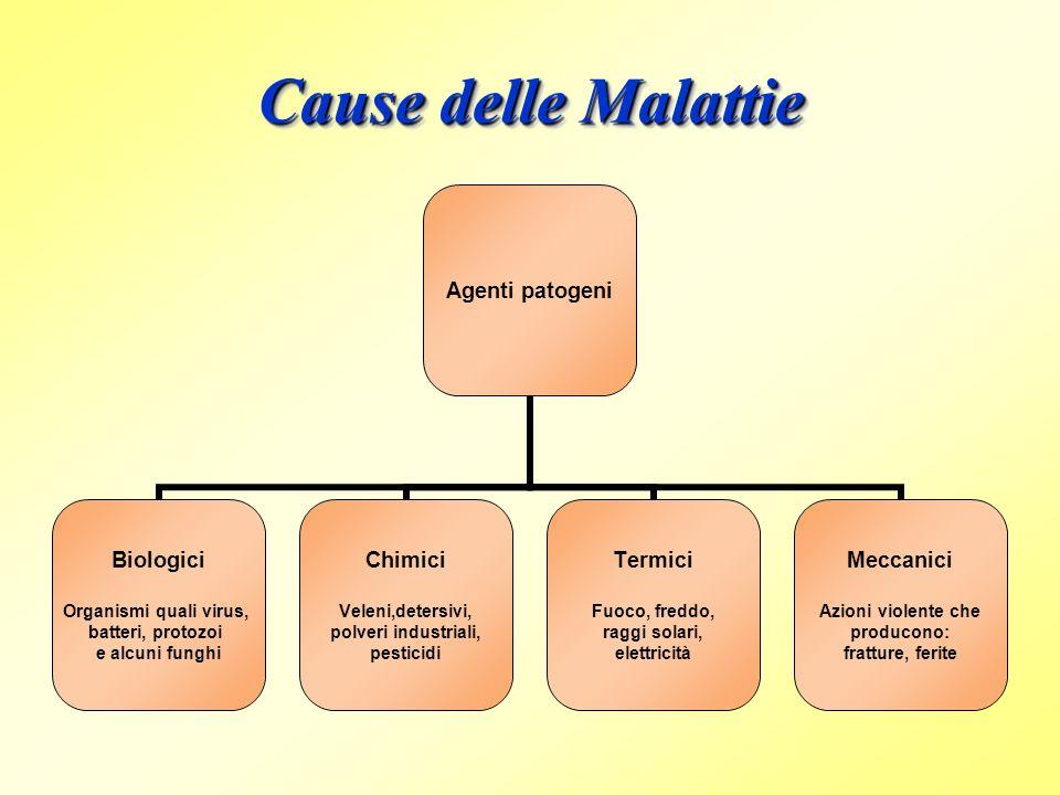 Cause delle Malattie