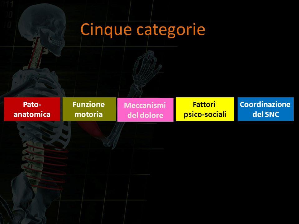 Cinque categorie Pato- anatomica Funzione motoria Meccanismi