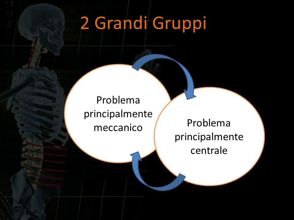 2 Grandi Gruppi Problema principalmente meccanico