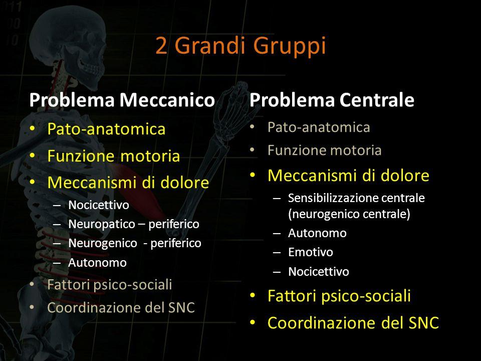 2 Grandi Gruppi Problema Meccanico Problema Centrale Pato-anatomica