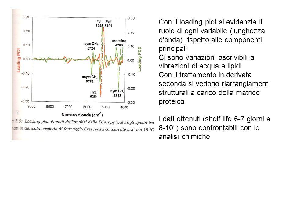 Con il loading plot si evidenzia il ruolo di ogni variabile (lunghezza d'onda) rispetto alle componenti principali
