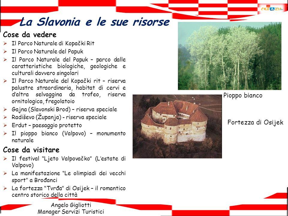 La Slavonia e le sue risorse