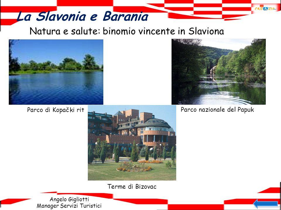La Slavonia e Barania Natura e salute: binomio vincente in Slaviona