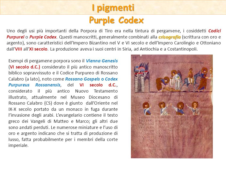 I pigmenti Purple Codex