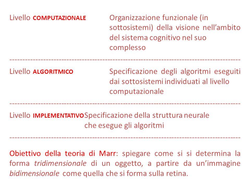 Livello computazionale Organizzazione funzionale (in sottosistemi) della visione nell'ambito del sistema cognitivo nel suo complesso ------------------------------------------------------------------------------------------ Livello algoritmico Specificazione degli algoritmi eseguiti dai sottosistemi individuati al livello computazionale Livello implementativo Specificazione della struttura neurale che esegue gli algoritmi Obiettivo della teoria di Marr: spiegare come si si determina la forma tridimensionale di un oggetto, a partire da un'immagine bidimensionale come quella che si forma sulla retina.