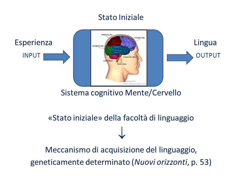 Stato Iniziale Esperienza Lingua input output Sistema cognitivo Mente/Cervello «Stato iniziale» della facoltà di linguaggio  Meccanismo di acquisizione del linguaggio, geneticamente determinato (Nuovi orizzonti, p.