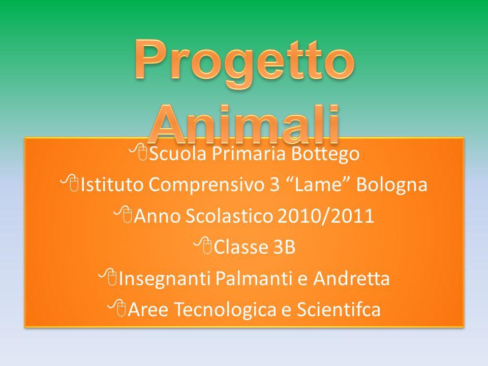 Progetto Animali Scuola Primaria Bottego