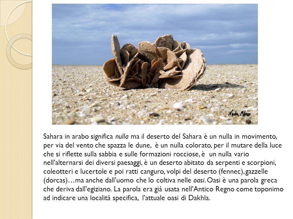 Sahara in arabo significa nulla ma il deserto del Sahara è un nulla in movimento, per via del vento che spazza le dune, è un nulla colorato, per il mutare della luce che si riflette sulla sabbia e sulle formazioni rocciose, è un nulla vario nell'alternarsi dei diversi paesaggi, è un deserto abitato da serpenti e scorpioni, coleotteri e lucertole e poi ratti canguro, volpi del deserto (fennec), gazzelle (dorcas)…ma anche dall'uomo che lo coltiva nelle oasi.