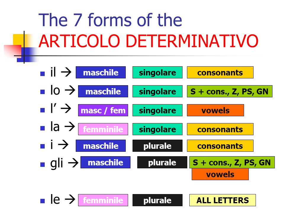 The 7 forms of the ARTICOLO DETERMINATIVO