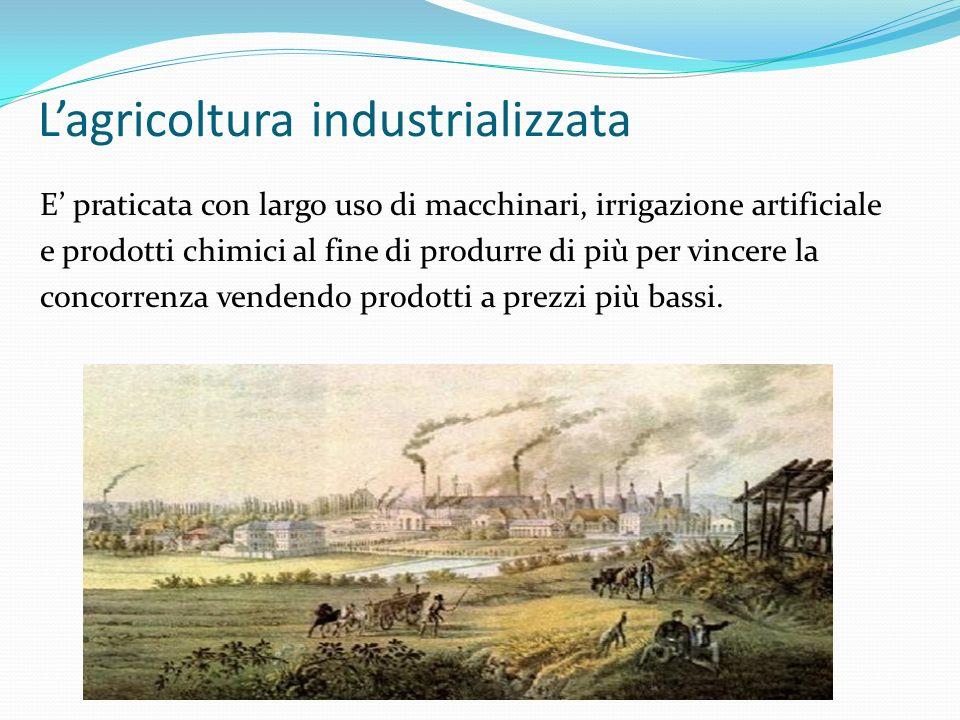 L'agricoltura industrializzata