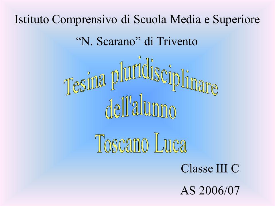Tesina pluridisciplinare dell alunno Toscano Luca
