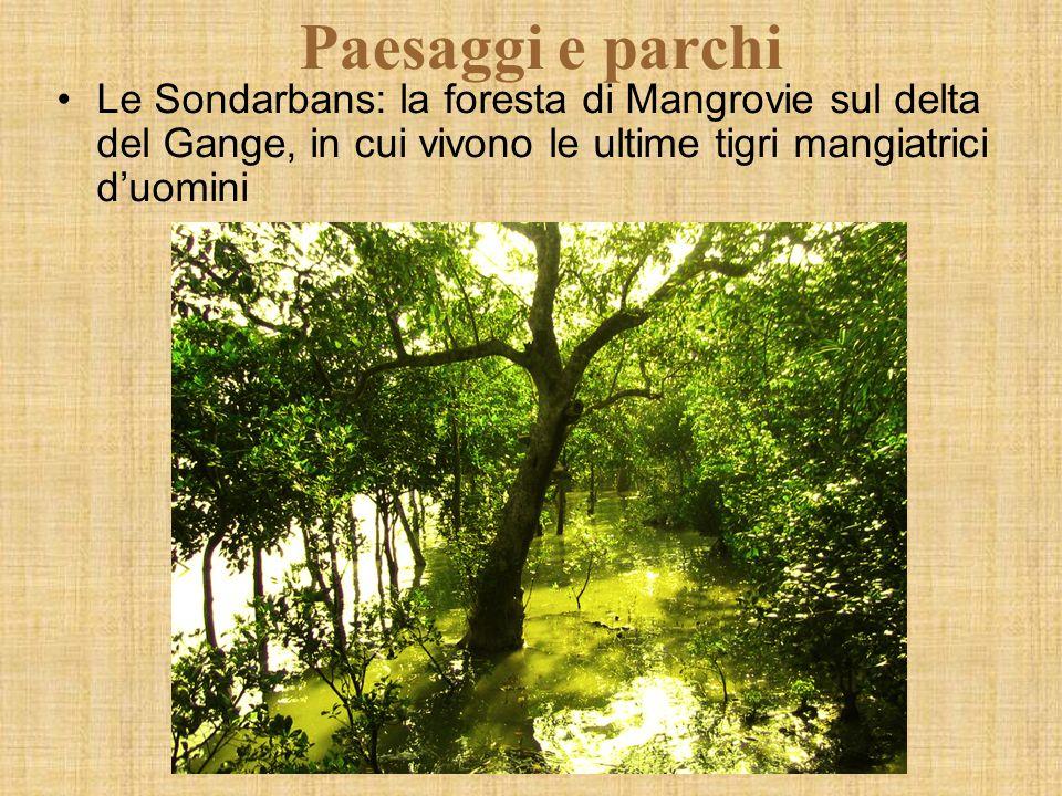 Paesaggi e parchi Le Sondarbans: la foresta di Mangrovie sul delta del Gange, in cui vivono le ultime tigri mangiatrici d'uomini.