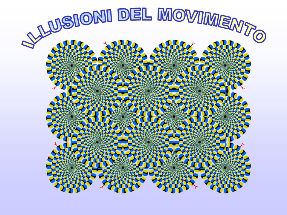 ILLUSIONI DEL MOVIMENTO