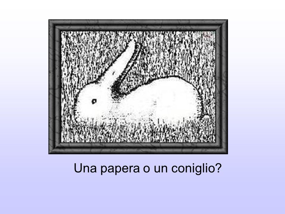 Una papera o un coniglio